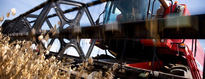 Jardinería y maquinaria agrícola San Isidro